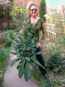 kale tree and EF 2012 004 web