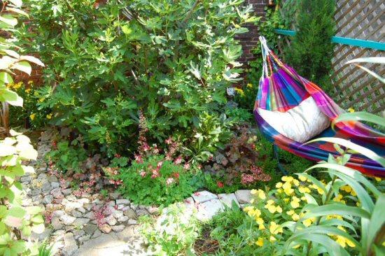 web_hammock_spring_garden_2009_037.jpg