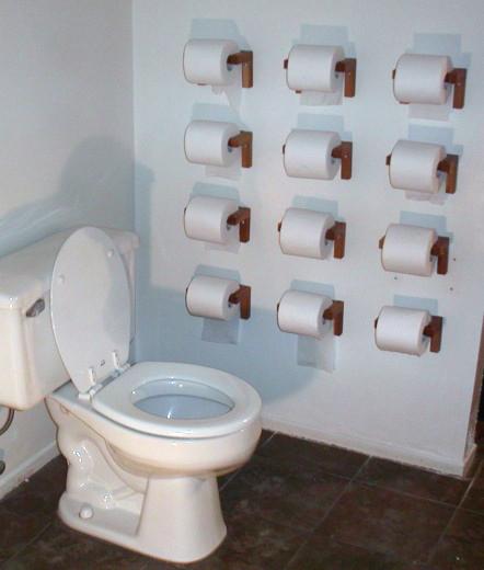 3_7_08_toilet_paper.jpg